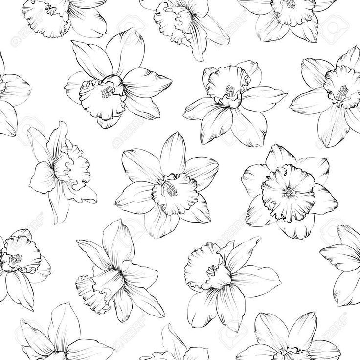 Stock Photo | Comment Dessiner Une Fleur, Jonquille pour Dessin Jonquille Fleur