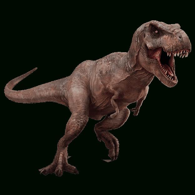 T Rex Dinosaur Transparent Background Dinosaur Image avec Dinosaure Tyrex