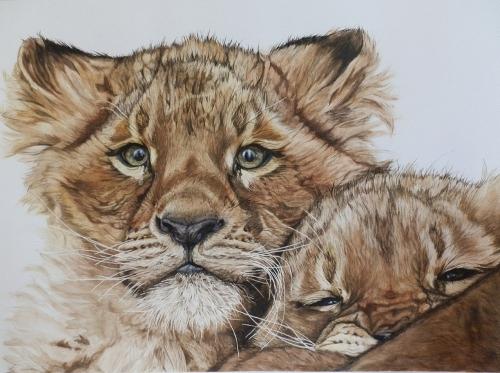 """Tableau (Aquarelle) """"Lionceaux, Frère Et Soeur"""" Par L avec Lionceau Dessin"""