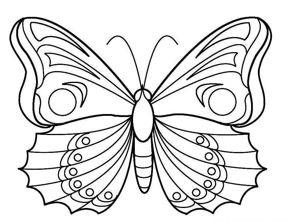 Télécharger Et Imprimer Ces Coloriages De Papillon à Coloriage Papillon