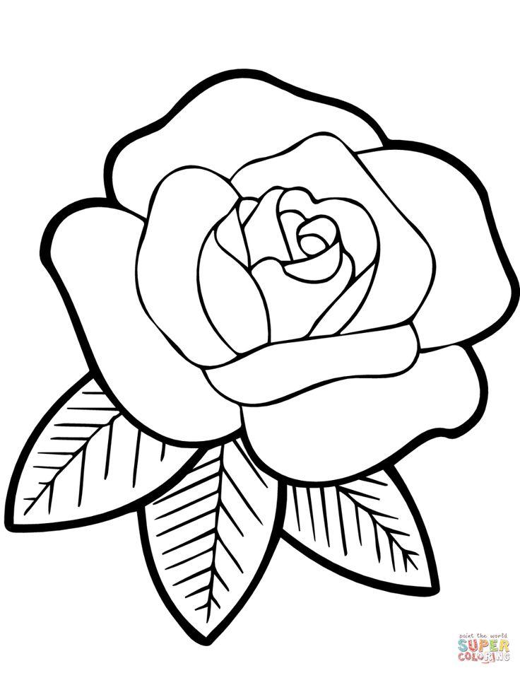 Tige D'Une Rose Épineuse Coloriage - Recherche Google à Coloriage D Une Rose