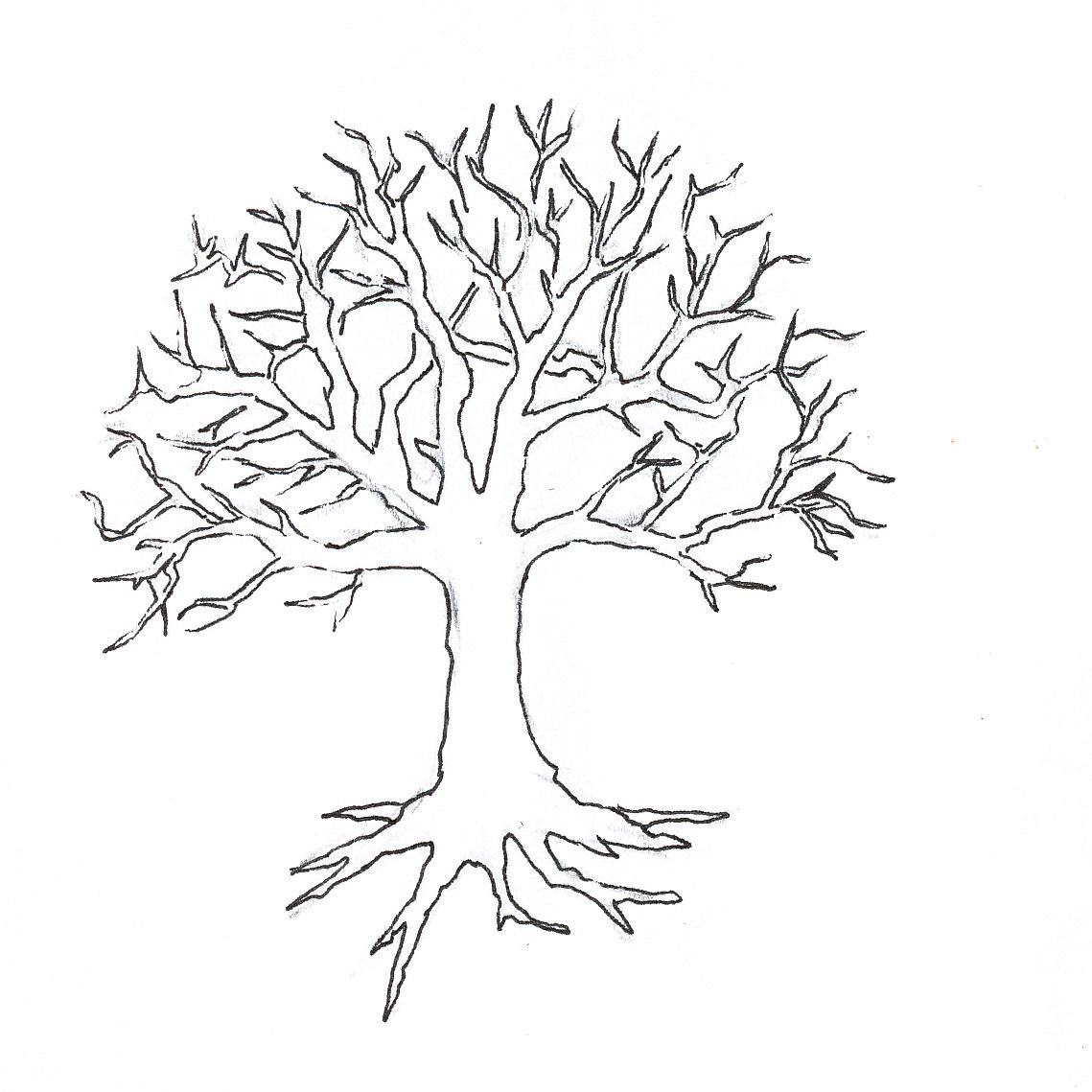 Tree-Outline-With-Tree-Template-Best-Photos-Of-Christmas destiné Dessin D Arbre En Hiver