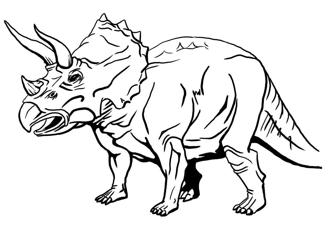 Triceratops Para Colorear - Imagui intérieur Coloriage Dinosaure Raptor
