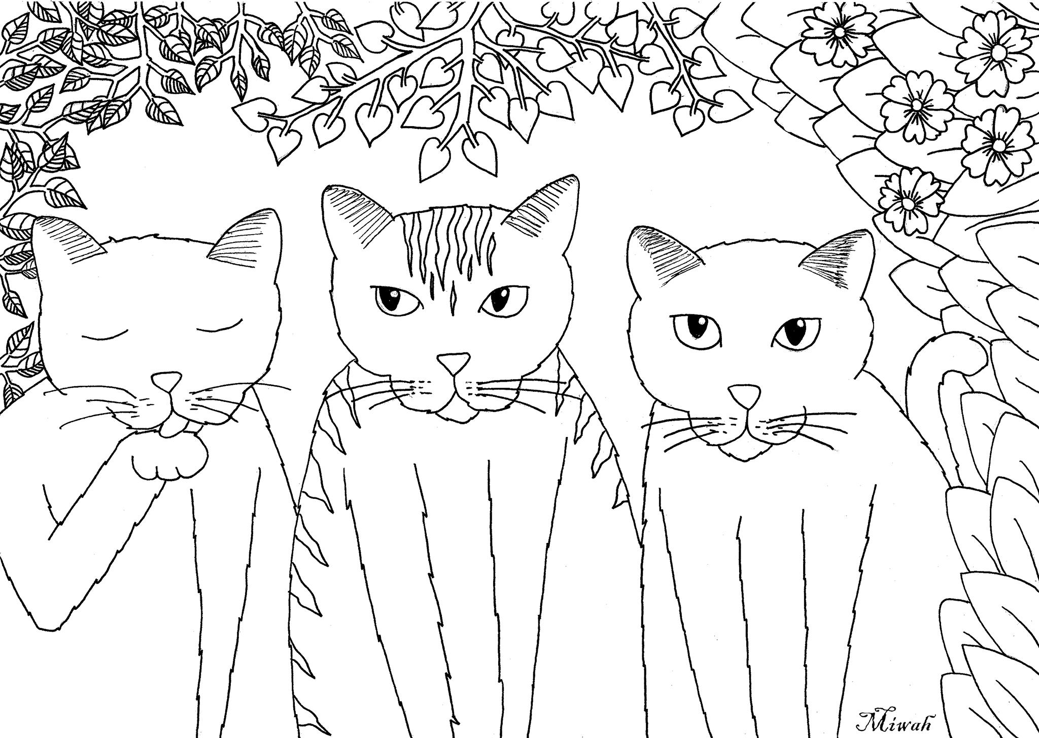 Trois Petits Chats Par Miwah | Animaux - Coloriages avec Dessin De Chat Simple