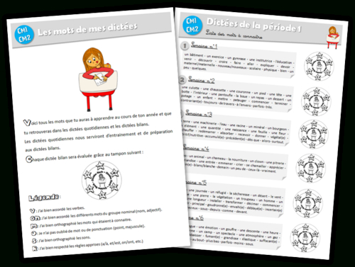 Un An De Dictées Au Cm1-Cm2 (Journal De Bord D'Une Instit destiné Un Cahier D??Criture Cm1 Cm2