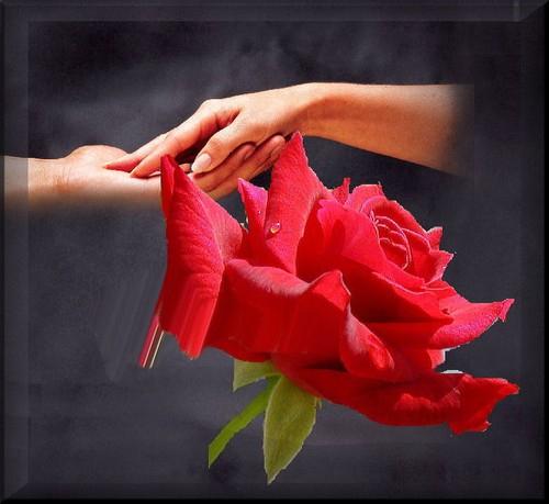 Viens Prend Ma Main | A L'Encre De Mes Mots encequiconcerne Ma Main Est Une Fleur
