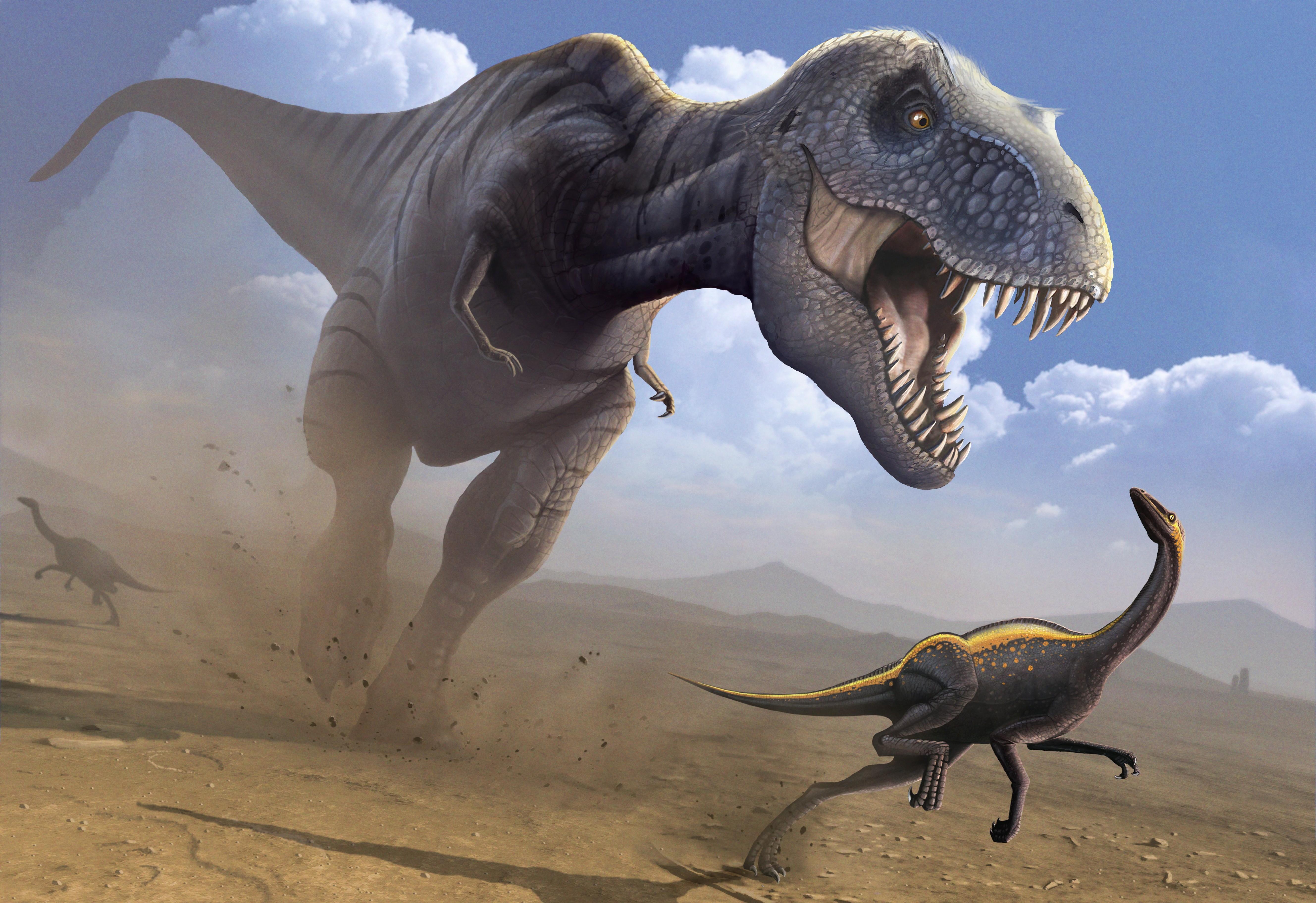 Wallpaper Tyrannosaurus, Ornithomimus, Dinosaur, Art, Art concernant Dinosaure Tyrex